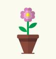 flat cute pink flower bloom in brown pot vector image vector image