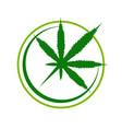 simple cannabis compass symbol logo design vector image vector image