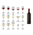 wine glasses types white and red wine drink cups vector image