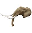 A head of an elephant vector image
