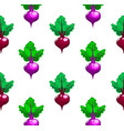 beetroot patterncartoon stylevegetables vector image