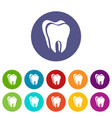 canine tooth icon simple style vector image vector image