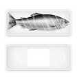 salmon fish package mockup set realistic vector image
