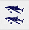 shark sticker design vector image