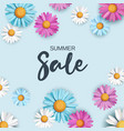 summer sale background with colorful daisy flowers vector image vector image