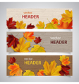 autumn headers vector image