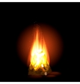 Bonfire with burning Paulin vector image