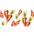 carrots pattern watercolor fresh spring vector image vector image