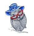entangle style owl in red eyeglasses and blue