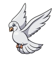 Flying white dove 2 vector image vector image