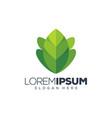 leaf logo design vector image vector image