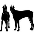 silhouette dog dobermann isolated vector image vector image