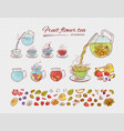 tea constructor flowers fruits brew process vector image