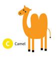 letter c camel dromedary zoo animal alphabet