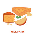milk farm promotional poster with delicious cheese vector image vector image