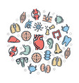 organs and anatomy colored icons in circle vector image