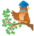 owl teacher theme image 1 vector image vector image
