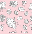 seamless pattern with white roses on pink vector image vector image