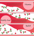 thin line radish design vegetable food banner vector image vector image