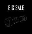 big sale of flashlights vector image