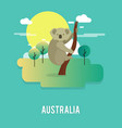 cute koala native animal in australia design vector image