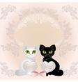 elegant cats vector image vector image
