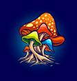 fungus red mushroms vector image
