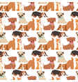 puppy cute playing dogs characters funny purebred vector image vector image