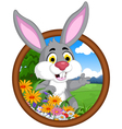 rabbit cartoon in frame vector image