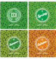 set of backgrounds with leaves in different season vector image vector image