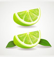 slices lime isolated icon realistic vector image vector image