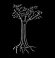 tree isolated on black vector image vector image