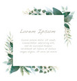 watercolor botanical square frame vector image vector image