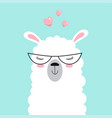 cute llama isolated valentine card vector image vector image