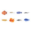 different types of fish icons in set collection vector image