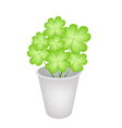 Four Leaf Clovers in A Flower Pot vector image vector image