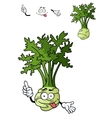 Funny cartoon celery vegetable vector image vector image