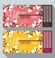 Gift Voucher Design Print Template Discount Card vector image vector image