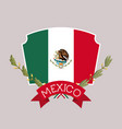 mexico insignia flag with ribbon in colorful vector image vector image