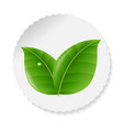 nature label with leaves vector image vector image