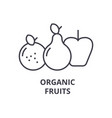organic fruits line icon outline sign linear vector image vector image