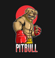 pitbull dog boxing sport vector image