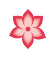 spa flower isolated vector image