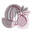 sticker silhouette watermelon and pineapple fruit vector image vector image