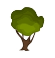 Tree nature green vector image vector image