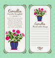 vintage label with potted flower camellia vector image