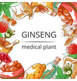 ginseng medical plant frame background vector image