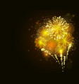 golden firework vector image