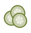 green sliced cucumber vector image