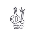 organic onion line icon outline sign linear vector image vector image